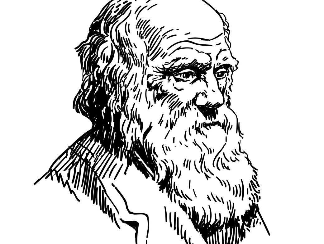 Disbelieving Darwin: the dangers of evolution opinion polls